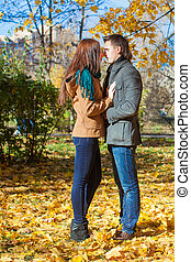 jong paar, in, herfst, park, op, een, zonnig, vallen dag