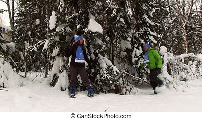 jong paar, in, winter, bos