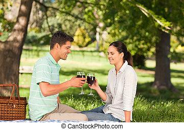 jong paar, picnicking, in, de, gelijkheid