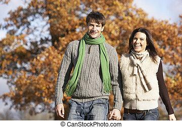 jong paar, wandelende, in park, holdingshanden