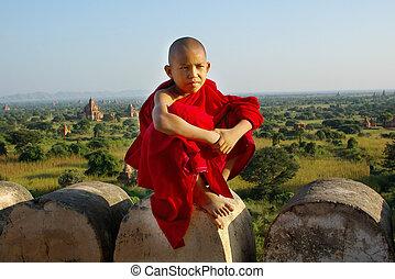 jonge, boeddhistische monnik, op, tempel, achtergrond