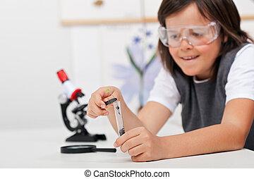 jonge jongen, studeren, plant, in, biologie klas
