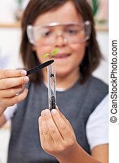 jonge jongen, studerend , plant, evolutie, in, wetenschap klas