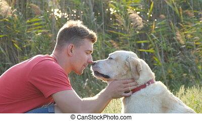 jonge man, streling, het koesteren, en, kussende , zijn, labrador, buiten, op, nature., spelend, met, gouden, retriever., dog, het likken, mannelijke , face., liefde, en, vriendschap, met, huiselijk, animal., landscape, op, achtergrond., dichtbegroeid boven