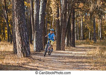 jongen, fiets helm, zonnig, forest., buitenshuis, cycling, geitje