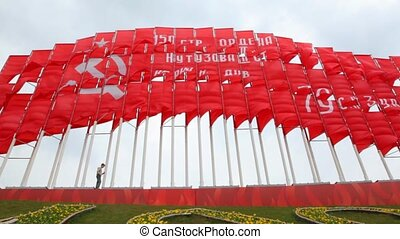 jongen, reusachtig, tegen, vlaggen, wandelingen, communist, rood