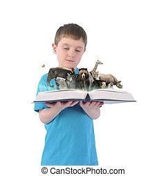jongen, vasthouden, boek, van, wilde dieren, op wit, achtergrond
