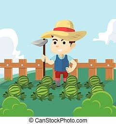 jongen, wanneer, watermeloen, farmer, gebruik, oogsten, dag