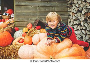 jongen, weinig; niet zo(veel), 5-6, oud, boerderij, halloween, kies, jaar, schattige, markt, pompoen