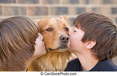 jongens, kussende , een, dog