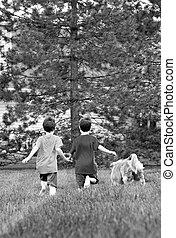 jongens, rennende , met, hun, dog