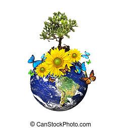 jord, hos, en, træ, og, blomster, isoleret, hen, en, hvid baggrund