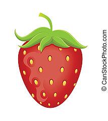 jordbær, vektor, illustration