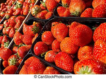 jordgubbe, korgar