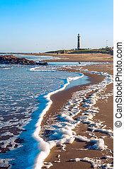 jose, 灯台, este, punta, ウルグアイ, 有名, ignacio, del, 浜