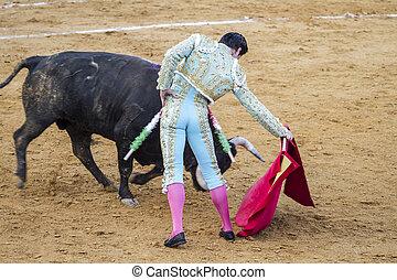 jose, canales, bullfighter., antonio, 有名, スペイン語, rivera
