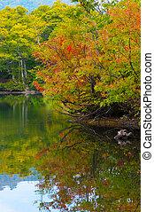 joshinetsu, 國家, kamaike, kogen, 公園, japan., 池塘