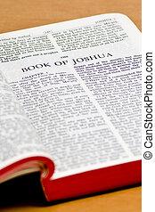 joshua, 聖書, -, ページ