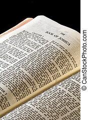 joshua, serie, biblia