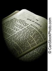 joshua, serie, biblia, sepia
