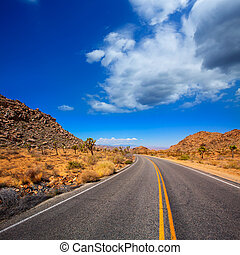 Joshua Tree boulevard Road in Yucca Valley desert California...