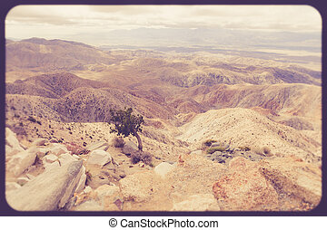 Joshua Tree Park - Vintage style view of tree and California...