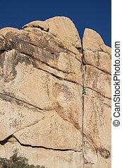 Joshua Tree Rock Climber