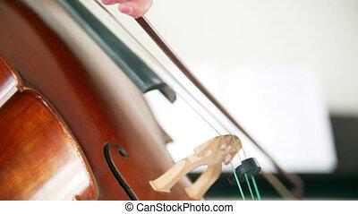 jouer, salle, violoncelle, arc