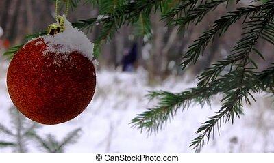 jouet, hiver, parc, branche, impeccable, noël