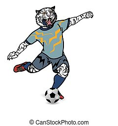 joueur, football, tigre, donner coup pied, fond, blanc