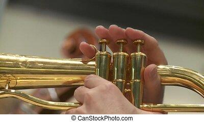 joueur, trompette
