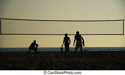 joueurs, plage, silhouette, volley-ball