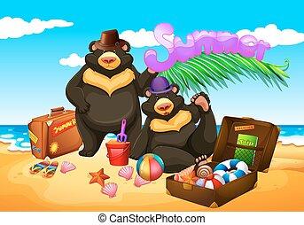 jouir de, été, plage, deux ours
