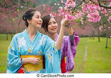 jouir de, cerise, filles, japonaise, arbre., fleurs
