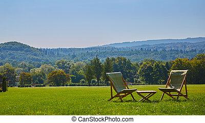 jouir de, jardin, relâcher, bois, forêt, chaise, table., vue