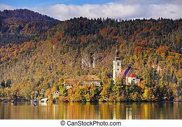 jour ensoleillé, lac, automne, saigné, slovénie