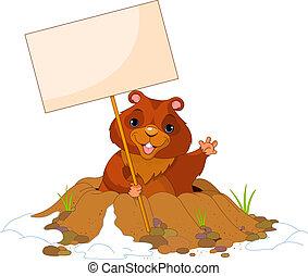 jour, panneau affichage, marmotte amérique