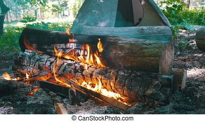 journaux bord, camping, amidst, forêt, brûlures, feu, tente