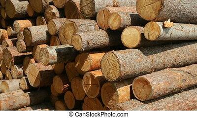 journaux bord, terrestre, bois construction, entier