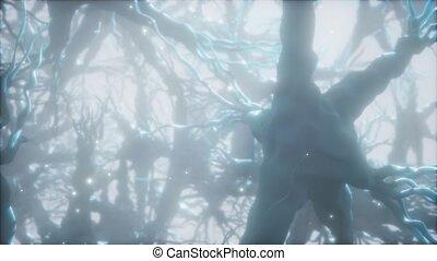 Journey through a neuron cell network inside the brain