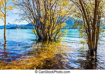 Abraham Lake in a flood