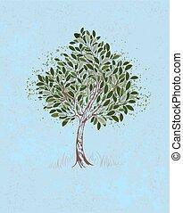jovem, árvore, ligado, um, experiência azul