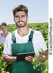 jovem, agricultor, vinhedo, tabuleta, macho, segurando