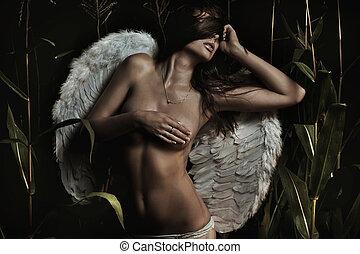 jovem, anjo, silueta, asas, mulher, bonito