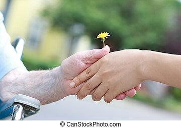 jovem, e, mulheres sêniors, segurando, um, dandelion
