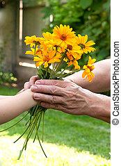 jovem, mão, dar, um, flores, para, senior's, mão
