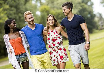jovem, multiracial, amigos, parque