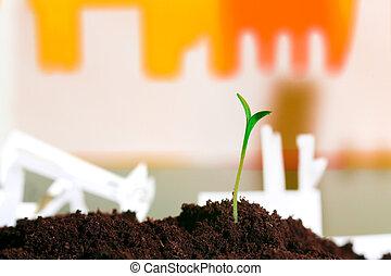 jovem, planta verde, em, solo, oposta, fábrica