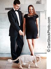joven, feliz, pareja embarazada, con, su, divertido, gato