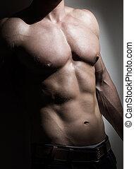 joven, muscular, hombre, torso